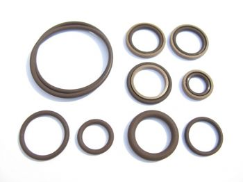 Beisan Systems S54 Vanos Seals Repair Kit